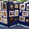Exhibition at Shoreham Library September 5th – 24th