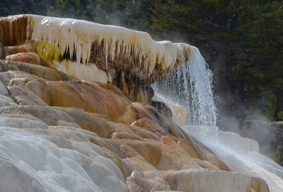 A hot spring terrace in Yellowstone