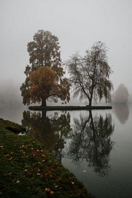 Misty Morning at Stourhead