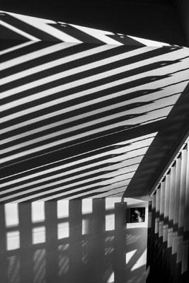 Morning Light Through the Blinds