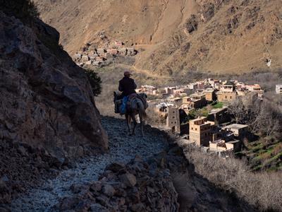 Berber Mule Trail