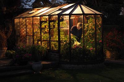 A Little Light Gardening