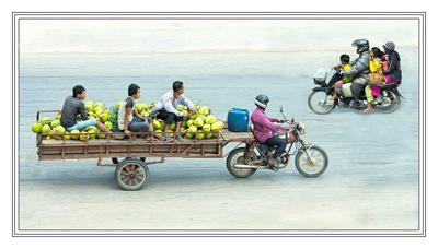 The Coconut Run Cambodia